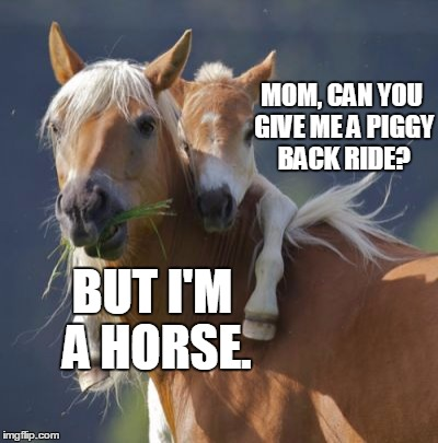 Foal Of Mine | MOM, CAN YOU GIVE ME A PIGGY BACK RIDE? BUT I'M A HORSE. | image tagged in memes,foal of mine | made w/ Imgflip meme maker