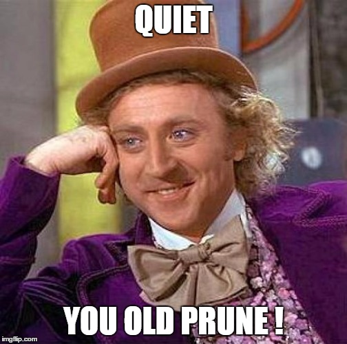 Creepy Condescending Wonka Meme | QUIET YOU OLD PRUNE ! | image tagged in memes,creepy condescending wonka | made w/ Imgflip meme maker