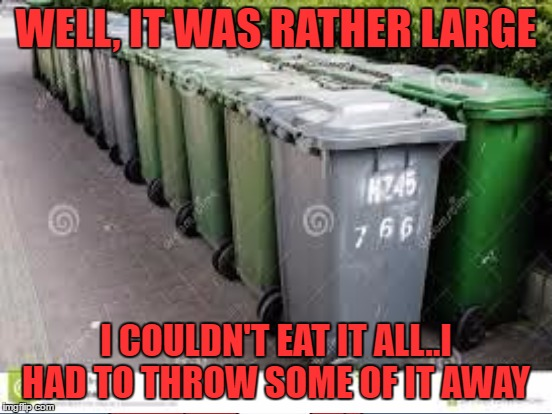 WELL, IT WAS RATHER LARGE I COULDN'T EAT IT ALL..I HAD TO THROW SOME OF IT AWAY | made w/ Imgflip meme maker