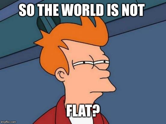 Futurama Fry Meme | SO THE WORLD IS NOT FLAT? | image tagged in memes,futurama fry | made w/ Imgflip meme maker