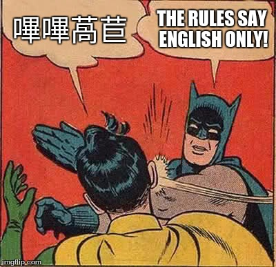 Imgflip rules | 嗶嗶萵苣 THE RULES SAY ENGLISH ONLY! | image tagged in memes,batman slapping robin | made w/ Imgflip meme maker