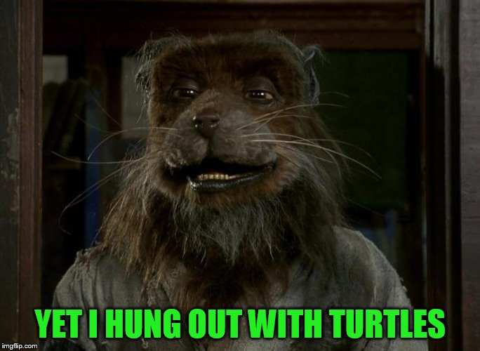 YET I HUNG OUT WITH TURTLES | made w/ Imgflip meme maker