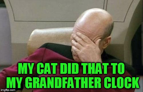 Captain Picard Facepalm Meme | MY CAT DID THAT TO MY GRANDFATHER CLOCK | image tagged in memes,captain picard facepalm | made w/ Imgflip meme maker