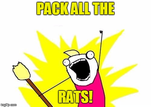 X All The Y Meme | PACK ALL THE RATS! | image tagged in memes,x all the y | made w/ Imgflip meme maker