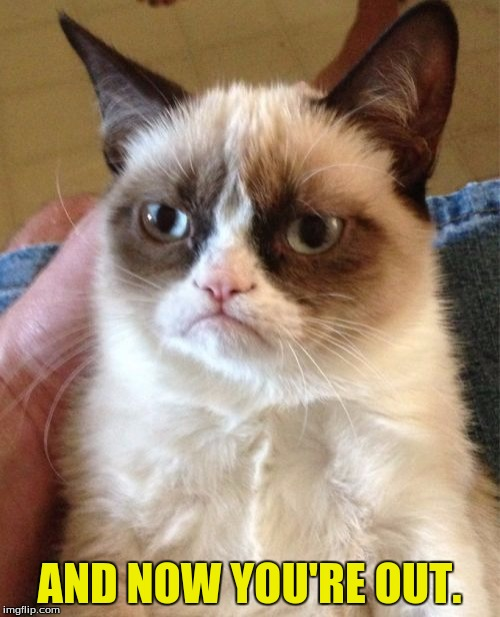 Grumpy Cat Meme | AND NOW YOU'RE OUT. | image tagged in memes,grumpy cat | made w/ Imgflip meme maker