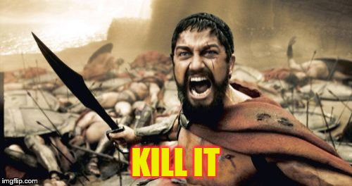 Sparta Leonidas Meme | KILL IT | image tagged in memes,sparta leonidas | made w/ Imgflip meme maker
