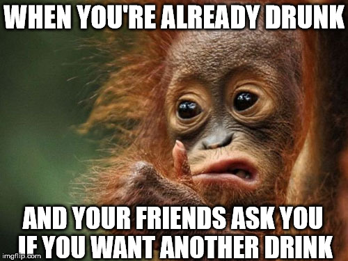 We've all been there.. |  WHEN YOU'RE ALREADY DRUNK; AND YOUR FRIENDS ASK YOU IF YOU WANT ANOTHER DRINK | image tagged in monkey,drunk,friends,memes | made w/ Imgflip meme maker