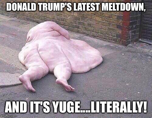 DONALD TRUMP'S LATEST MELTDOWN, AND IT'S YUGE....LITERALLY! | image tagged in donald trump's meltdown | made w/ Imgflip meme maker