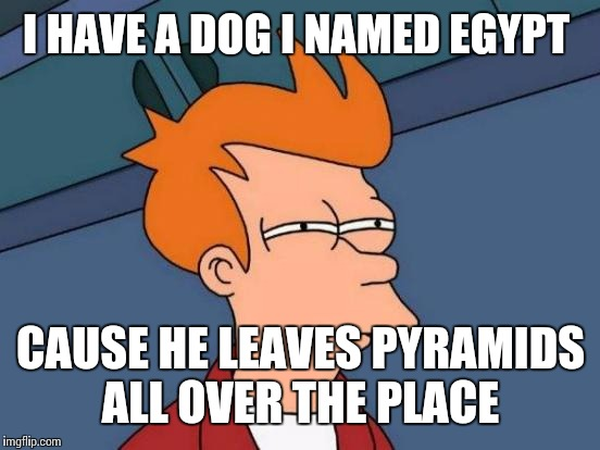 Futurama Fry Meme | I HAVE A DOG I NAMED EGYPT CAUSE HE LEAVES PYRAMIDS ALL OVER THE PLACE | image tagged in memes,futurama fry | made w/ Imgflip meme maker