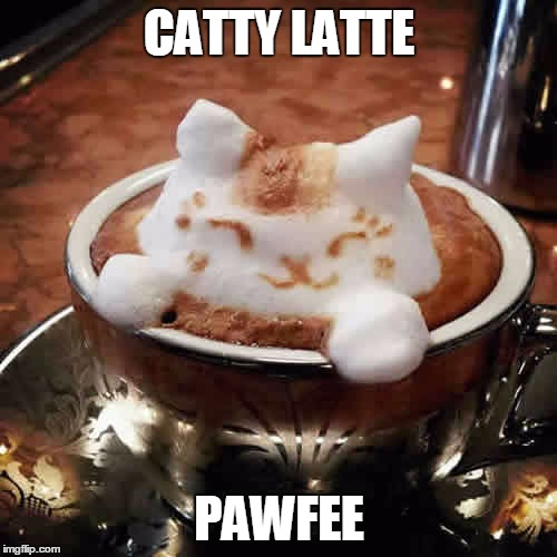 CATTY LATTE PAWFEE | made w/ Imgflip meme maker