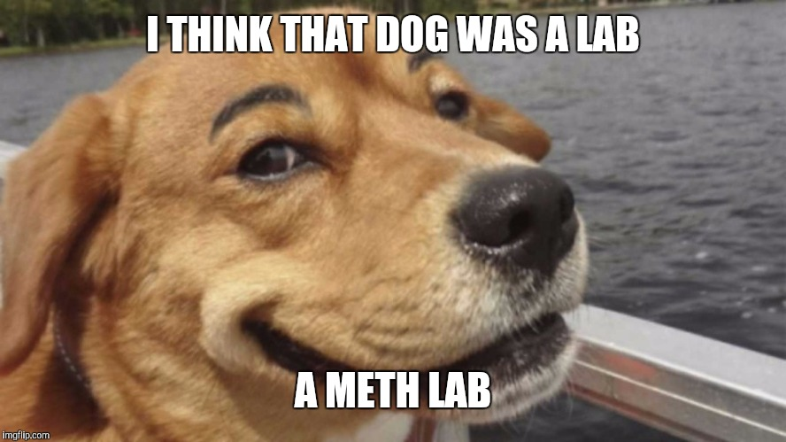I THINK THAT DOG WAS A LAB A METH LAB | made w/ Imgflip meme maker