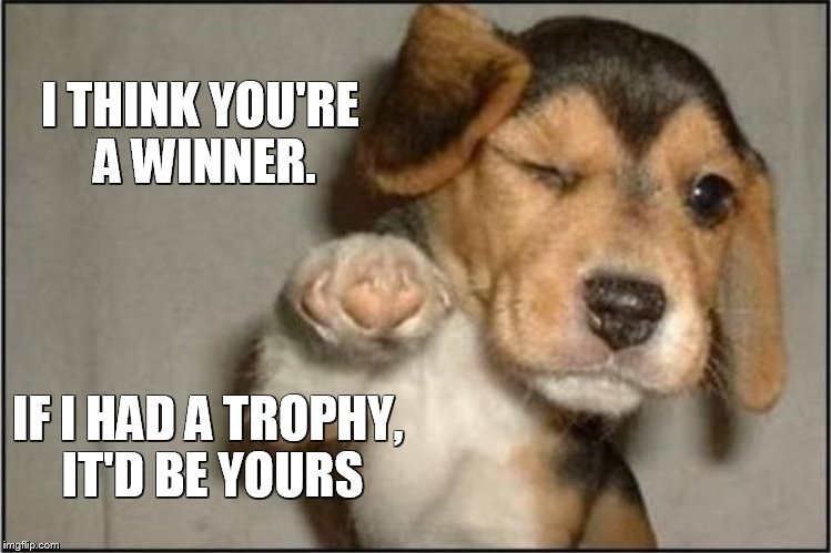 I THINK YOU'RE A WINNER. IF I HAD A TROPHY, IT'D BE YOURS | image tagged in pups,inspirational,trophy,cute,cute puppies,winners | made w/ Imgflip meme maker