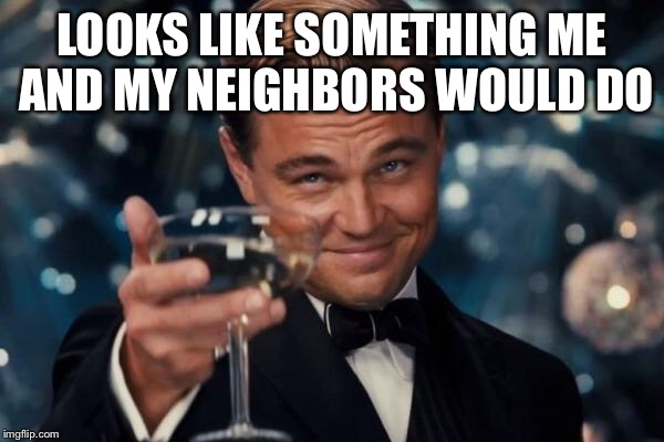 Leonardo Dicaprio Cheers Meme | LOOKS LIKE SOMETHING ME AND MY NEIGHBORS WOULD DO | image tagged in memes,leonardo dicaprio cheers | made w/ Imgflip meme maker