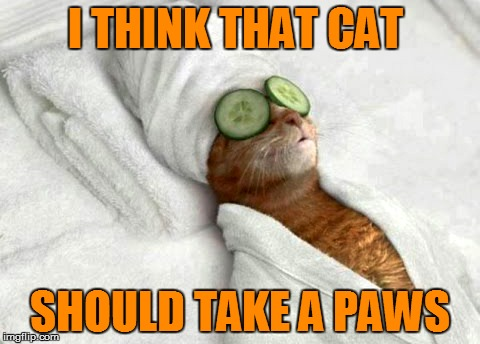 I THINK THAT CAT SHOULD TAKE A PAWS | made w/ Imgflip meme maker