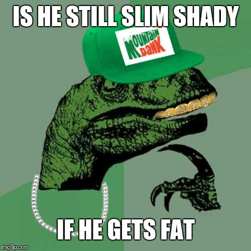 philosorapper | IS HE STILL SLIM SHADY IF HE GETS FAT | image tagged in philosorapper | made w/ Imgflip meme maker