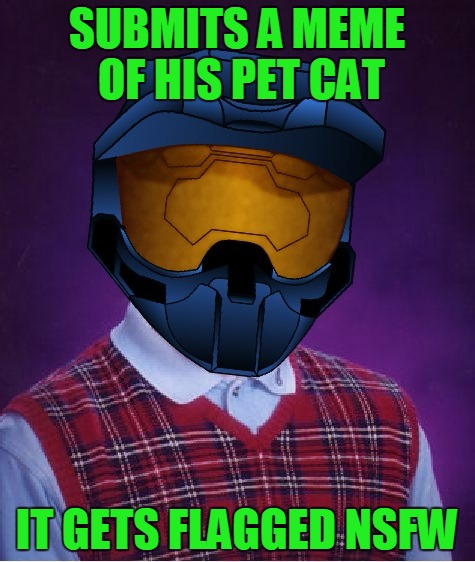 The Pet Cat Gets Flagged NSFW | SUBMITS A MEME OF HIS PET CAT IT GETS FLAGGED NSFW | image tagged in bad luck ghostofchurch,pet cat,it wasnt grabbed,still got flagged,not a true story | made w/ Imgflip meme maker