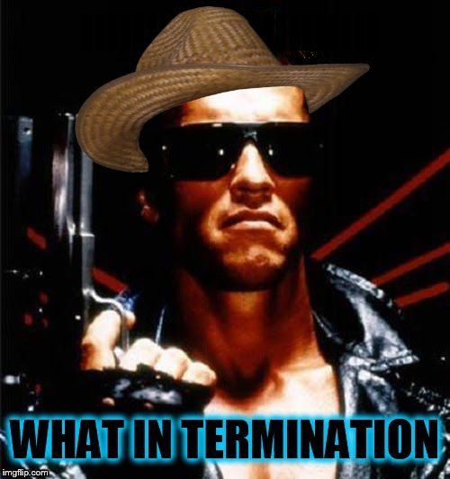 What In Tarnation is all these What In Tarnation memes? | . | image tagged in what in tarnation,trends,what-in-tarnation,terminator,arnold schwarzenegger,memes | made w/ Imgflip meme maker