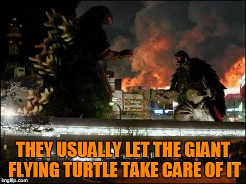 THEY USUALLY LET THE GIANT FLYING TURTLE TAKE CARE OF IT | made w/ Imgflip meme maker
