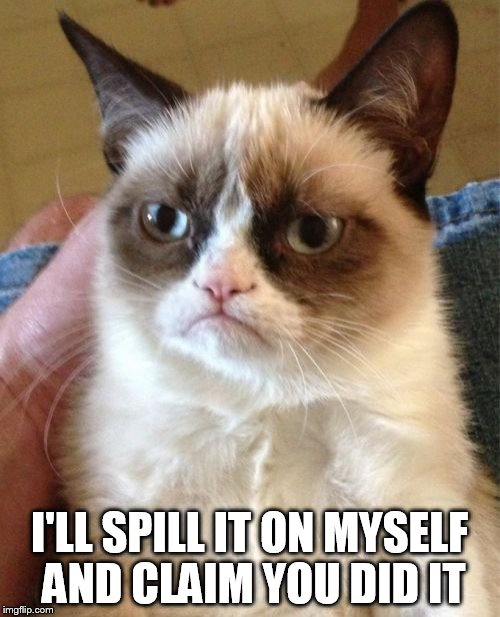 Grumpy Cat Meme | I'LL SPILL IT ON MYSELF AND CLAIM YOU DID IT | image tagged in memes,grumpy cat | made w/ Imgflip meme maker