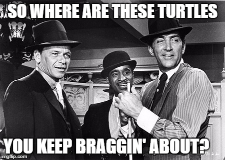 SO WHERE ARE THESE TURTLES YOU KEEP BRAGGIN' ABOUT? | made w/ Imgflip meme maker