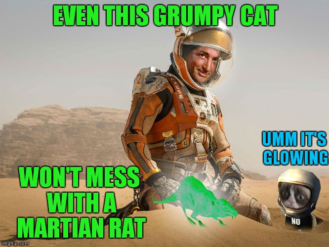 EVEN THIS GRUMPY CAT WON'T MESS WITH A MARTIAN RAT UMM IT'S GLOWING | made w/ Imgflip meme maker