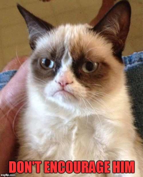 Grumpy Cat Meme | DON'T ENCOURAGE HIM | image tagged in memes,grumpy cat | made w/ Imgflip meme maker