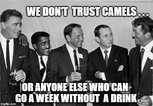Rat Pack Week - A Lynch1979 event | WE DON'T  TRUST CAMELS . . . OR ANYONE ELSE WHO CAN GO A WEEK WITHOUT  A DRINK | image tagged in rat pack 2,lynch1979,drinking,rat pack week,frank sinatra,las vegas | made w/ Imgflip meme maker