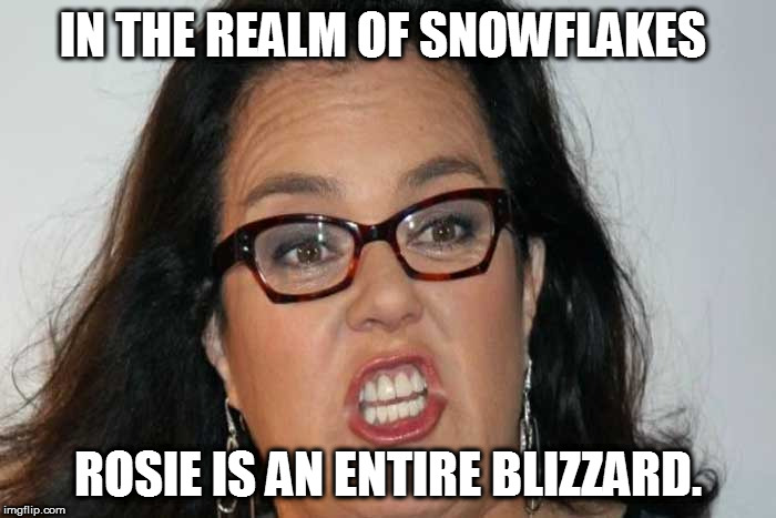 Blizzard Rosie | IN THE REALM OF SNOWFLAKES ROSIE IS AN ENTIRE BLIZZARD. | image tagged in rosie o'donnell,snowflake | made w/ Imgflip meme maker