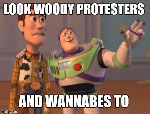 X, X Everywhere Meme | LOOK WOODY PROTESTERS AND WANNABES TO | image tagged in memes,x x everywhere | made w/ Imgflip meme maker