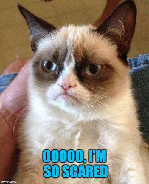 Grumpy Cat Meme | OOOOO, I'M SO SCARED | image tagged in memes,grumpy cat | made w/ Imgflip meme maker