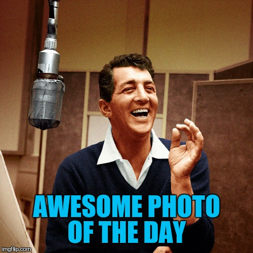 AWESOME PHOTO OF THE DAY | made w/ Imgflip meme maker