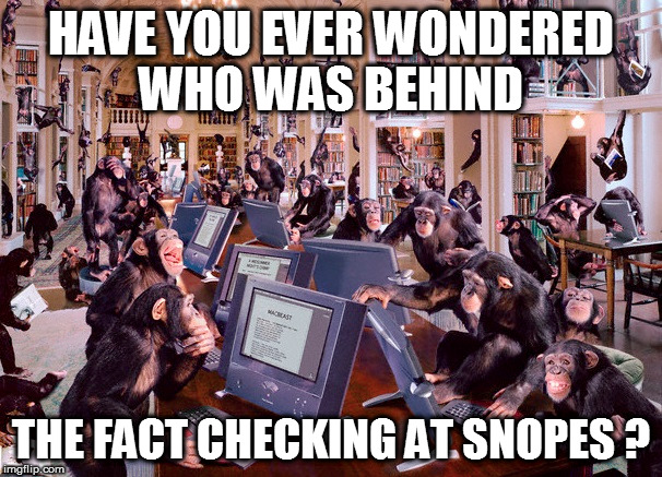 Snopes fact checkers  |  HAVE YOU EVER WONDERED WHO WAS BEHIND; THE FACT CHECKING AT SNOPES ? | image tagged in monkey snopes,snopes | made w/ Imgflip meme maker
