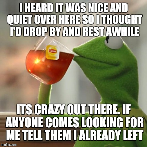 But Thats None Of My Business Meme | I HEARD IT WAS NICE AND QUIET OVER HERE SO I THOUGHT I'D DROP BY AND REST AWHILE ITS CRAZY OUT THERE. IF ANYONE COMES LOOKING FOR ME TELL TH | image tagged in memes,but thats none of my business,kermit the frog | made w/ Imgflip meme maker