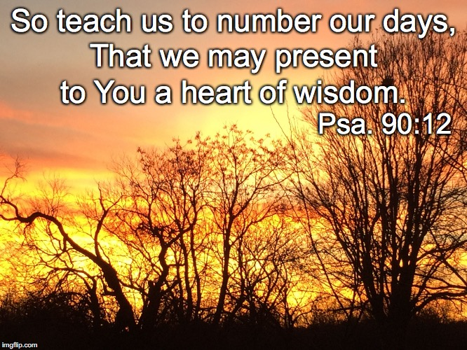 So teach us to number our days, That we may present to You a heart of wisdom. Psa. 90:12 | image tagged in days | made w/ Imgflip meme maker