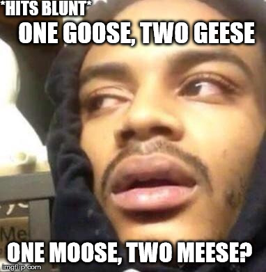 Canadian stoners | *HITS BLUNT* ONE GOOSE, TWO GEESE ONE MOOSE, TWO MEESE? | image tagged in stoned,canada,moose | made w/ Imgflip meme maker