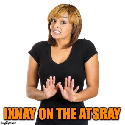 IXNAY ON THE ATSRAY | made w/ Imgflip meme maker