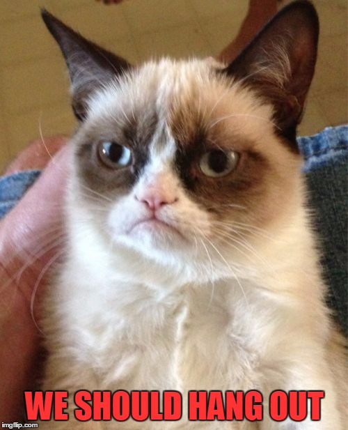 Grumpy Cat Meme | WE SHOULD HANG OUT | image tagged in memes,grumpy cat | made w/ Imgflip meme maker