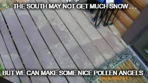 That time of year again | THE SOUTH MAY NOT GET MUCH SNOW . . . BUT WE CAN MAKE SOME NICE POLLEN ANGELS | image tagged in it's that time of year again,snow,pollen,south,angels,the south may not get much snow | made w/ Imgflip meme maker