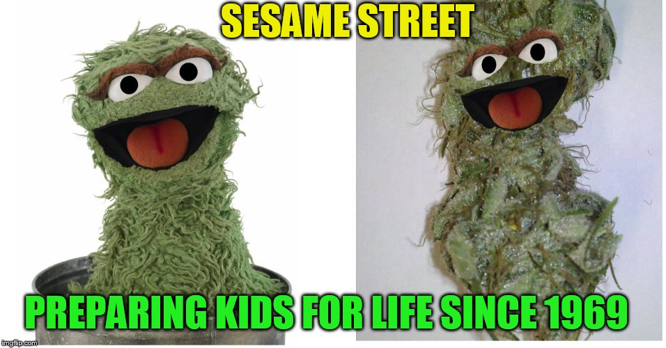 4:20 Week From February 28th to March 7th (A JohnnyMcCheesebag Event) | PREPARING KIDS FOR LIFE SINCE 1969 SESAME STREET | image tagged in memes,420,420 week,dank memes,funny memes,johnnymccheesebag | made w/ Imgflip meme maker