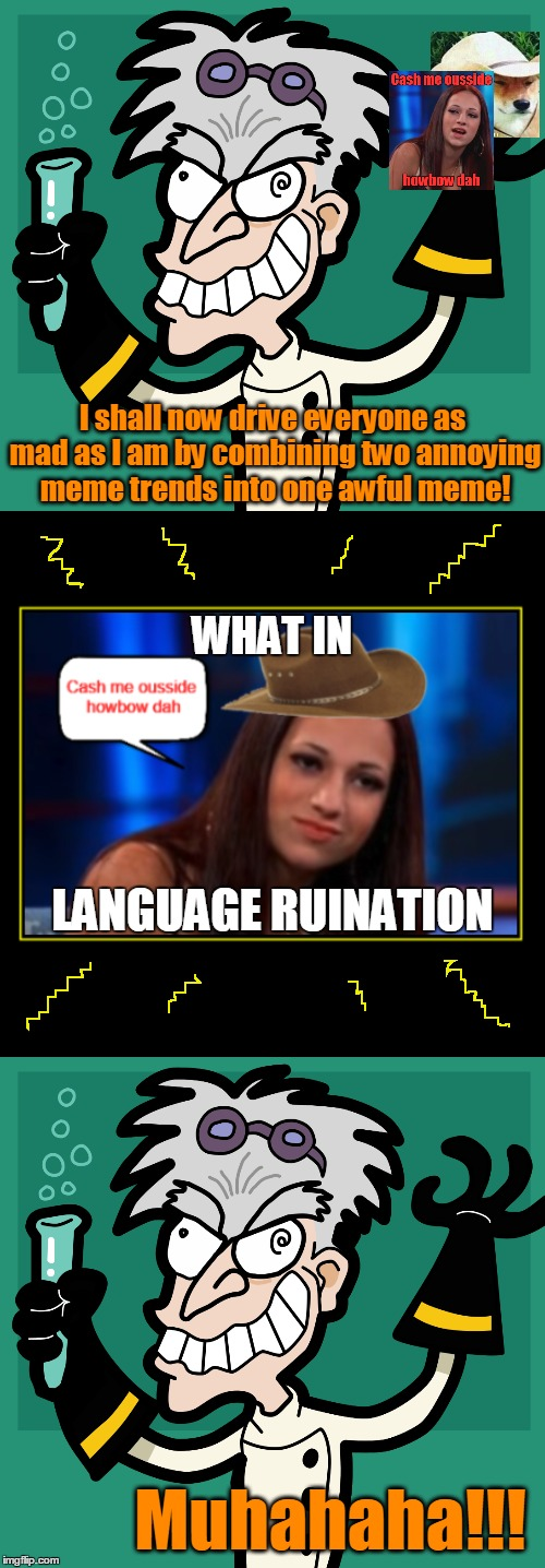 Look away! Look away! | I shall now drive everyone as mad as I am by combining two annoying meme trends into one awful meme! Muhahaha!!! WHAT IN LANGUAGE RUINATION | image tagged in memes,mad scientist,trends,cash me ousside howbow dah,what in tarnation,muhahaha | made w/ Imgflip meme maker