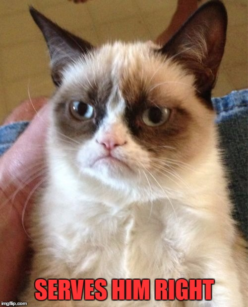 Grumpy Cat Meme | SERVES HIM RIGHT | image tagged in memes,grumpy cat | made w/ Imgflip meme maker