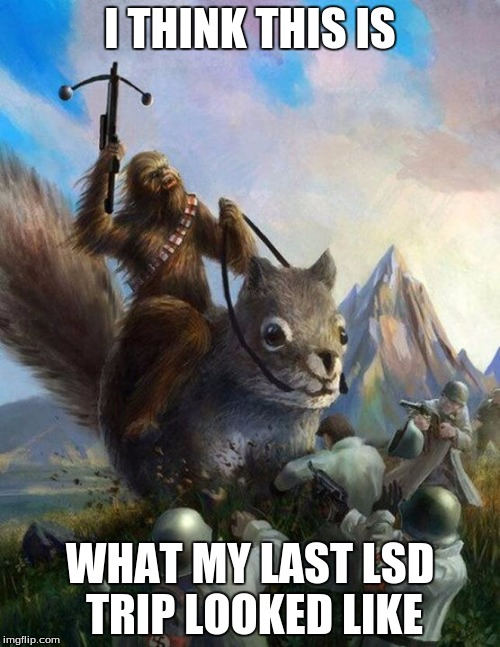 Wookie riding a squirrel killing nazis. Your argument is invalid | I THINK THIS IS WHAT MY LAST LSD TRIP LOOKED LIKE | image tagged in wookie riding a squirrel killing nazis your argument is invalid | made w/ Imgflip meme maker