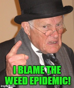 Back In My Day Meme | I BLAME THE WEED EPIDEMIC! | image tagged in memes,back in my day | made w/ Imgflip meme maker