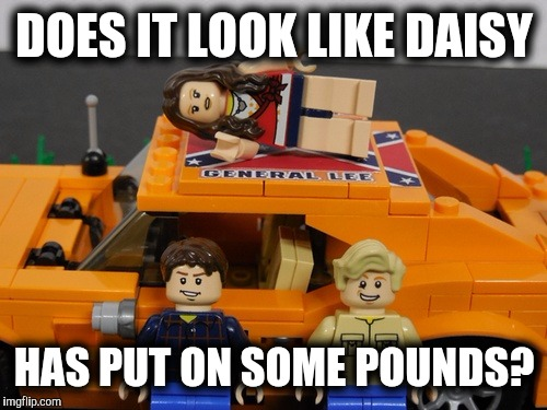 DOES IT LOOK LIKE DAISY HAS PUT ON SOME POUNDS? | made w/ Imgflip meme maker