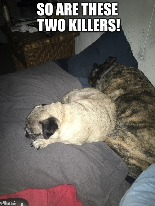 SO ARE THESE TWO KILLERS! | made w/ Imgflip meme maker