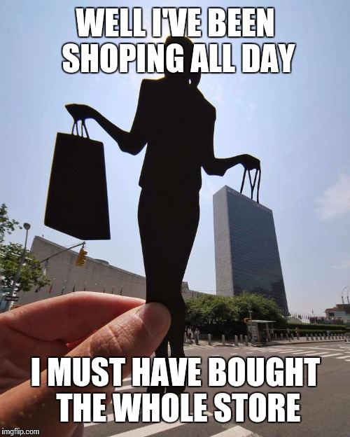 WELL I'VE BEEN SHOPING ALL DAY I MUST HAVE BOUGHT THE WHOLE STORE | made w/ Imgflip meme maker