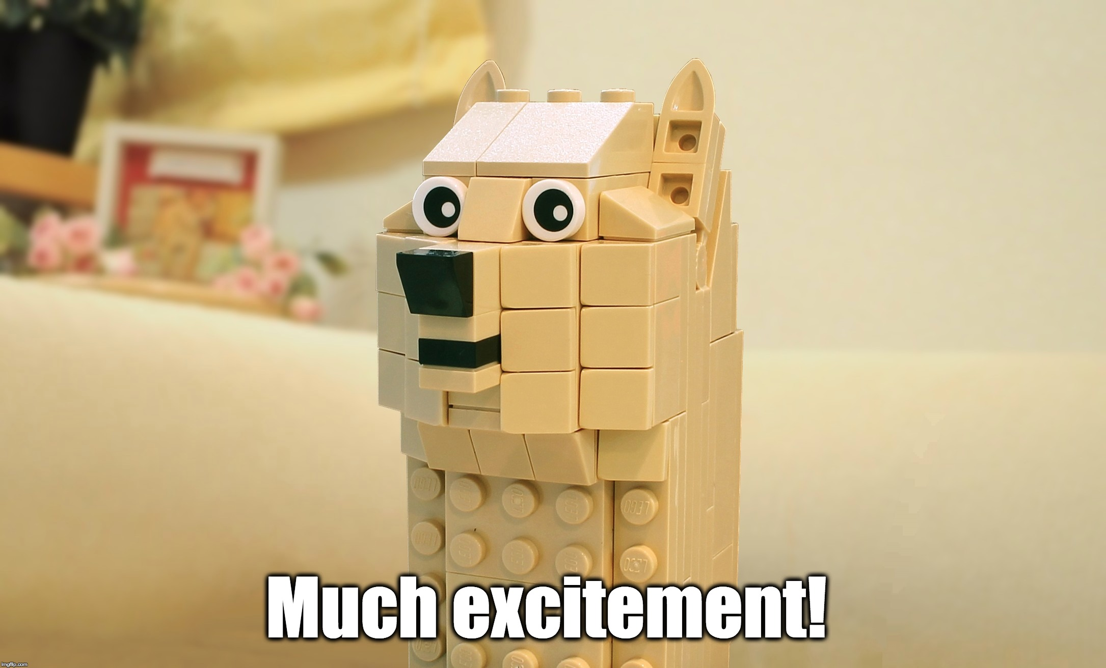 Much excitement! | made w/ Imgflip meme maker