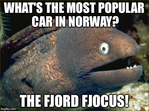 Dad joke, bad joke. | WHAT'S THE MOST POPULAR CAR IN NORWAY? THE FJORD FJOCUS! | image tagged in memes,bad joke eel,cars,geography,bad puns | made w/ Imgflip meme maker