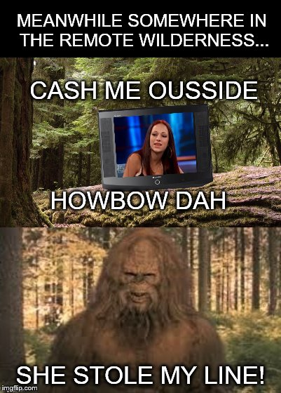 I'm Just As Shocked As You Are That He Is A Dr. Phil Fan | MEANWHILE SOMEWHERE IN THE REMOTE WILDERNESS... SHE STOLE MY LINE! CASH ME OUSSIDE HOWBOW DAH | image tagged in memes,cash me ousside how bow dah,sasquatch,dr phil | made w/ Imgflip meme maker