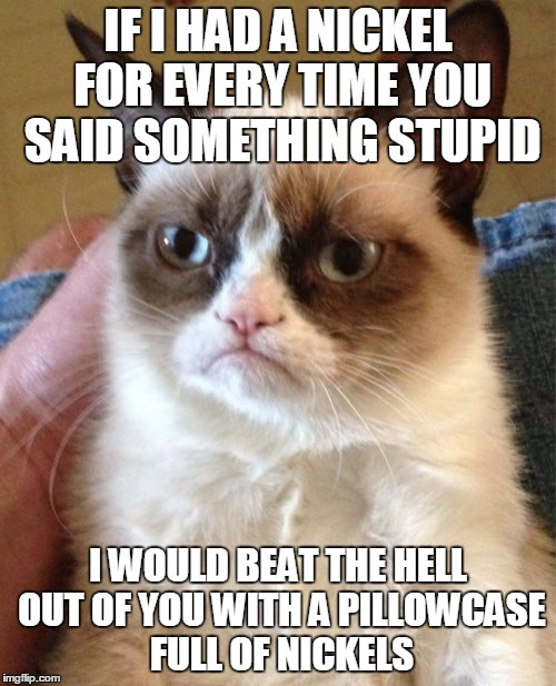 Grumpy Cat Meme | IF I HAD A NICKEL FOR EVERY TIME YOU SAID SOMETHING STUPID I WOULD BEAT THE HELL OUT OF YOU WITH A PILLOWCASE FULL OF NICKELS | image tagged in memes,grumpy cat | made w/ Imgflip meme maker
